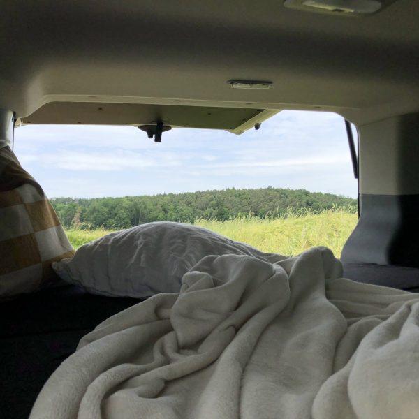 Der Blick aus dem Heck des Campingbusses in die grüne Landschaft.