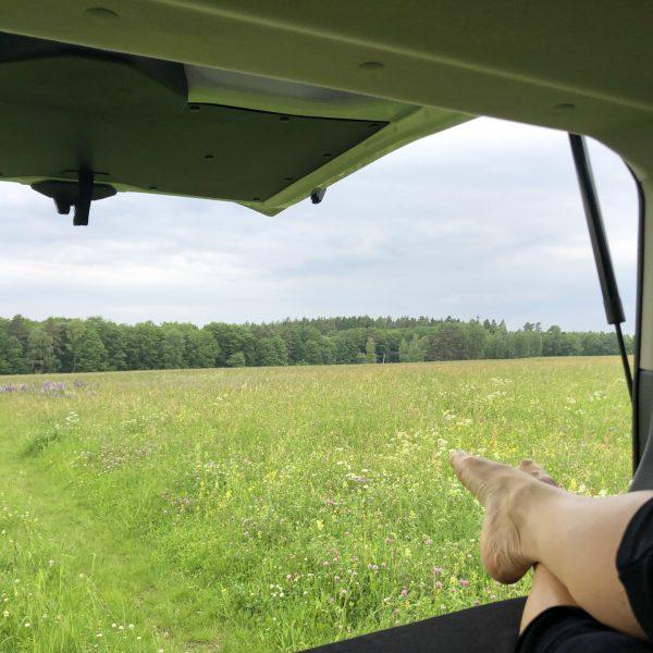 Der Blick aus dem Camper von der Liegefläche aus durch das Heck des Campers auf eine grüne Wiese.